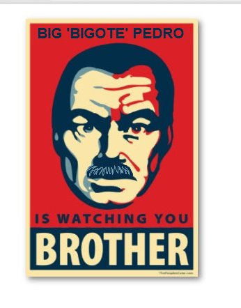 http://commons.wikimedia.org/wiki/File:Big_brOther.jpg Cdcrulz