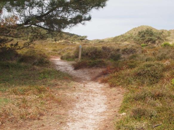 blauwe route