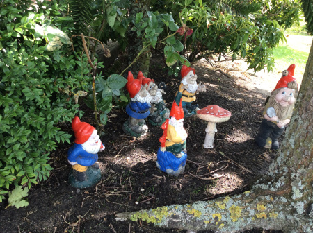 foto-garden-gnomes-wandering-free