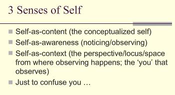 selfsenses