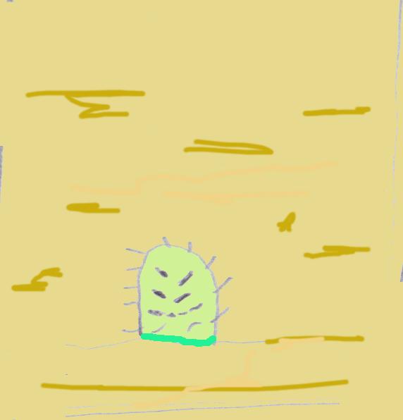 cactusstrip2